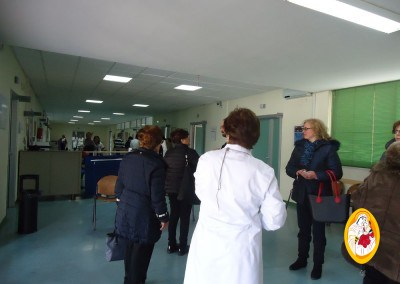 madonna-ospedale24